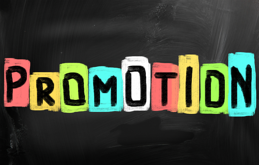 Promo Planning for Pros: Sample Promotional Plan Template