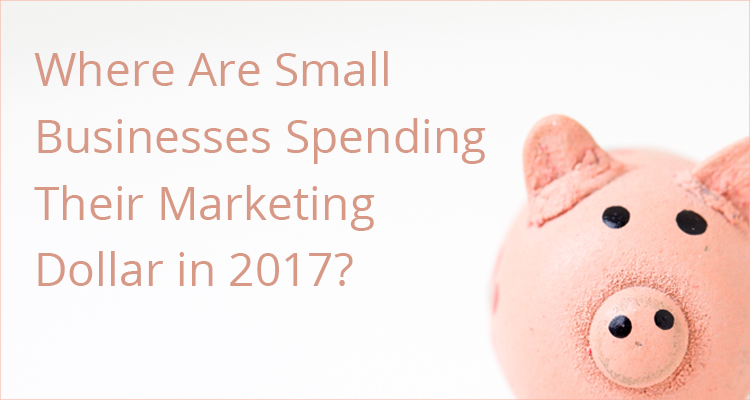 Small Business Marketing Spend in 2017
